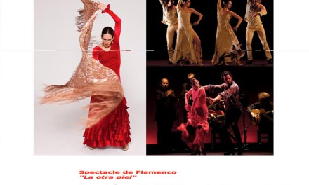 Il Flamenco a Marrakech