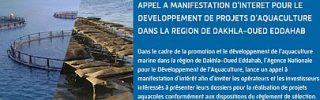 Marocco-opportunità-in-Acquacoltura