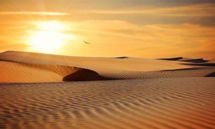 Safari nel deserto da Marrakech