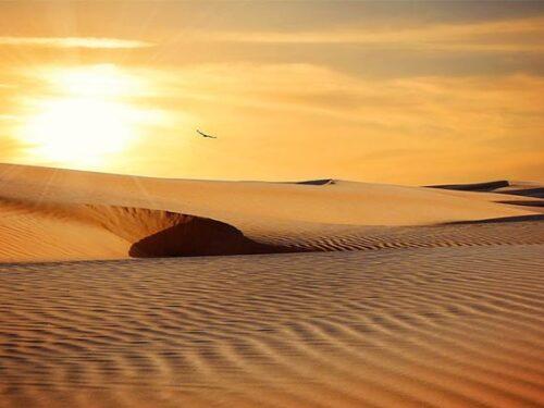 Tour nel deserto da Agadir