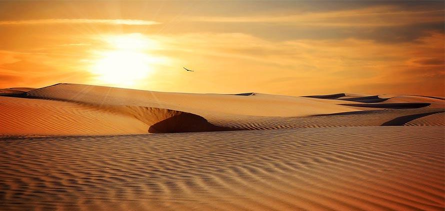 Il The nel deserto marocchino con Noureddine