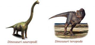 tracce-dinosauri-parco-geologico-mgoun-marocco