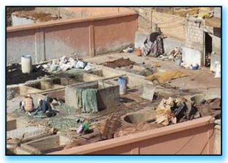 Tanneries Marrakech
