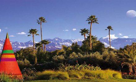 Anima Marrakech il giardino della fantasia