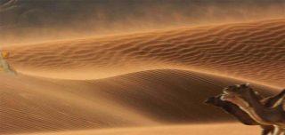 Chergui il vento del deserto