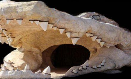 Crocodile Park di Agadir
