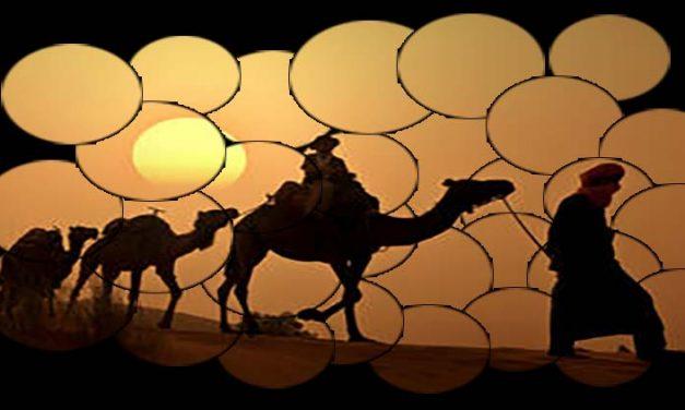 Sahara safari con escursione al tramonto e cena