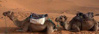Dormire nel deserto in un campo tendato