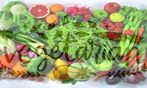 Essere vegetariani a Marrakech