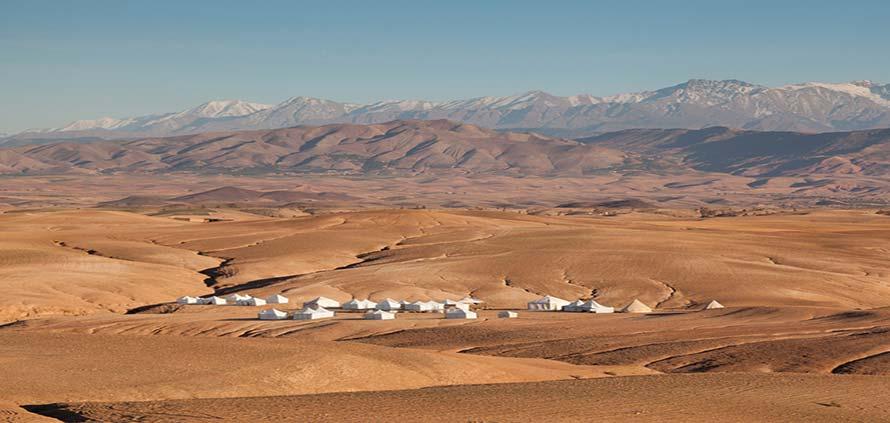 Scarabeo Camp Stone Deserto del Marocco