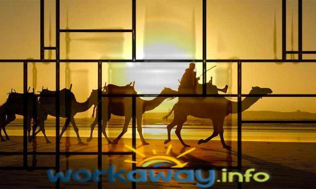 WorkAway come viaggiare e lavorare in Marocco