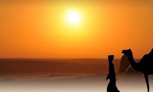 Cena e Spettacolo nel deserto Agafay