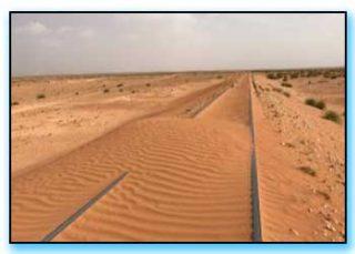 treno nel deserto