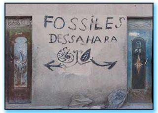 Incisioni rupestri del Marocco