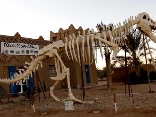 Erfoud Marocco