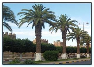 Taroudant Marocco