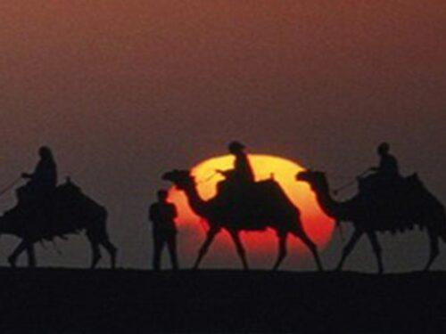 Giro in Cammello a Marrakech