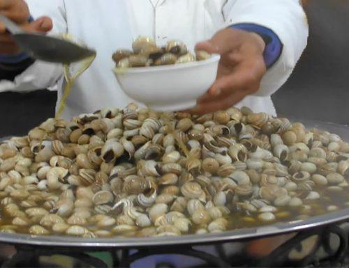 Le lumache del Marocco