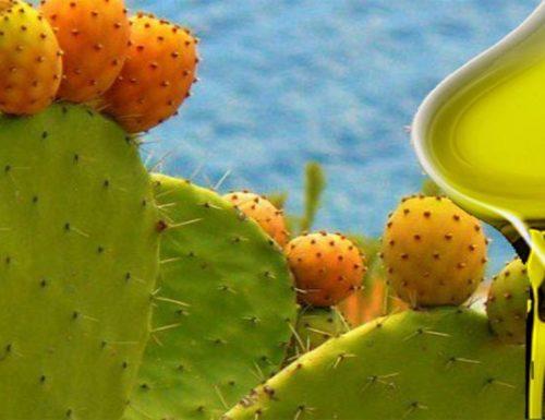 Olio di Cactus del Marocco