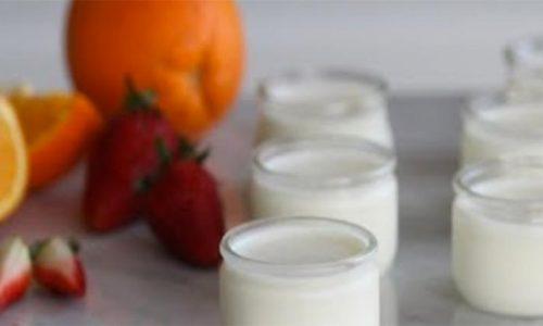 Raib lo Yogurt del Marocco