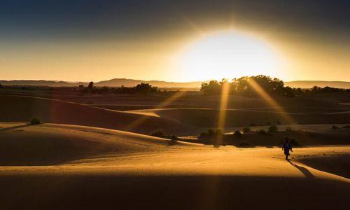 Il profumo del deserto